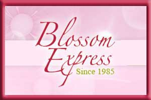 Blossom Express – Graduation Flowers